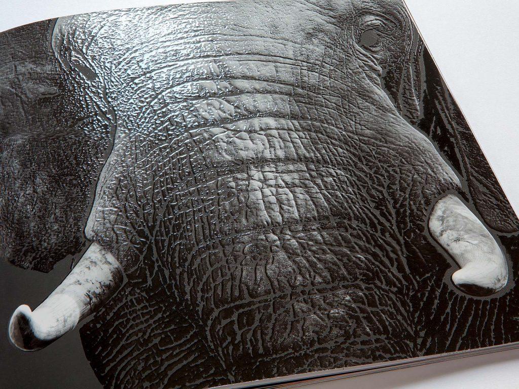 Druckveredelung - Elefantenhaut mit 3D-Lack