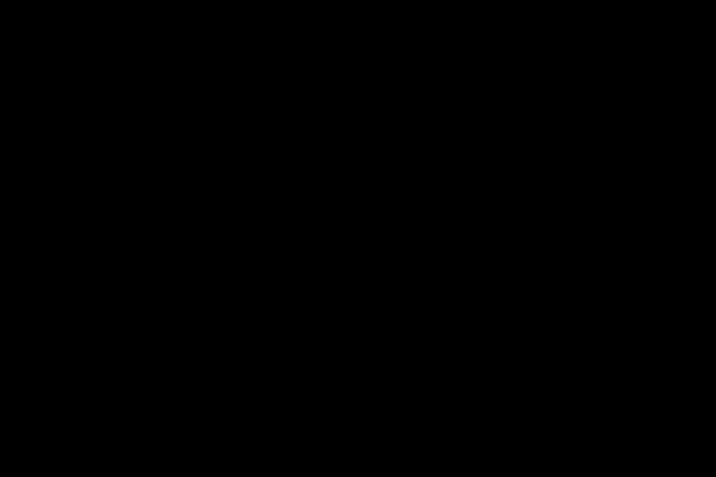 Ladenansicht mit Markenwänden und Logo in Form einer Lichtwerbung